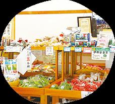 Museum shop & YAMANTA Farmers' market [2F]