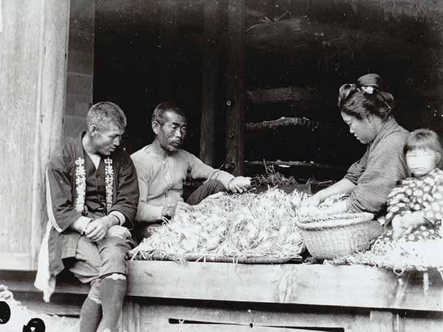 驹根市养蚕的历史